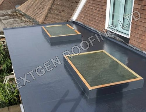 Extension GRP Flat Roof Replacement in Brighton