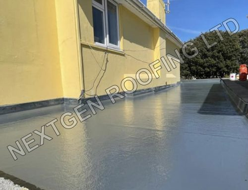 GRP Flat Roof Replacement in Worthing May 2021